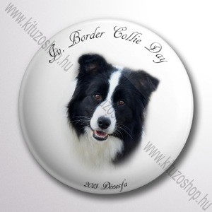 Border Collie Day